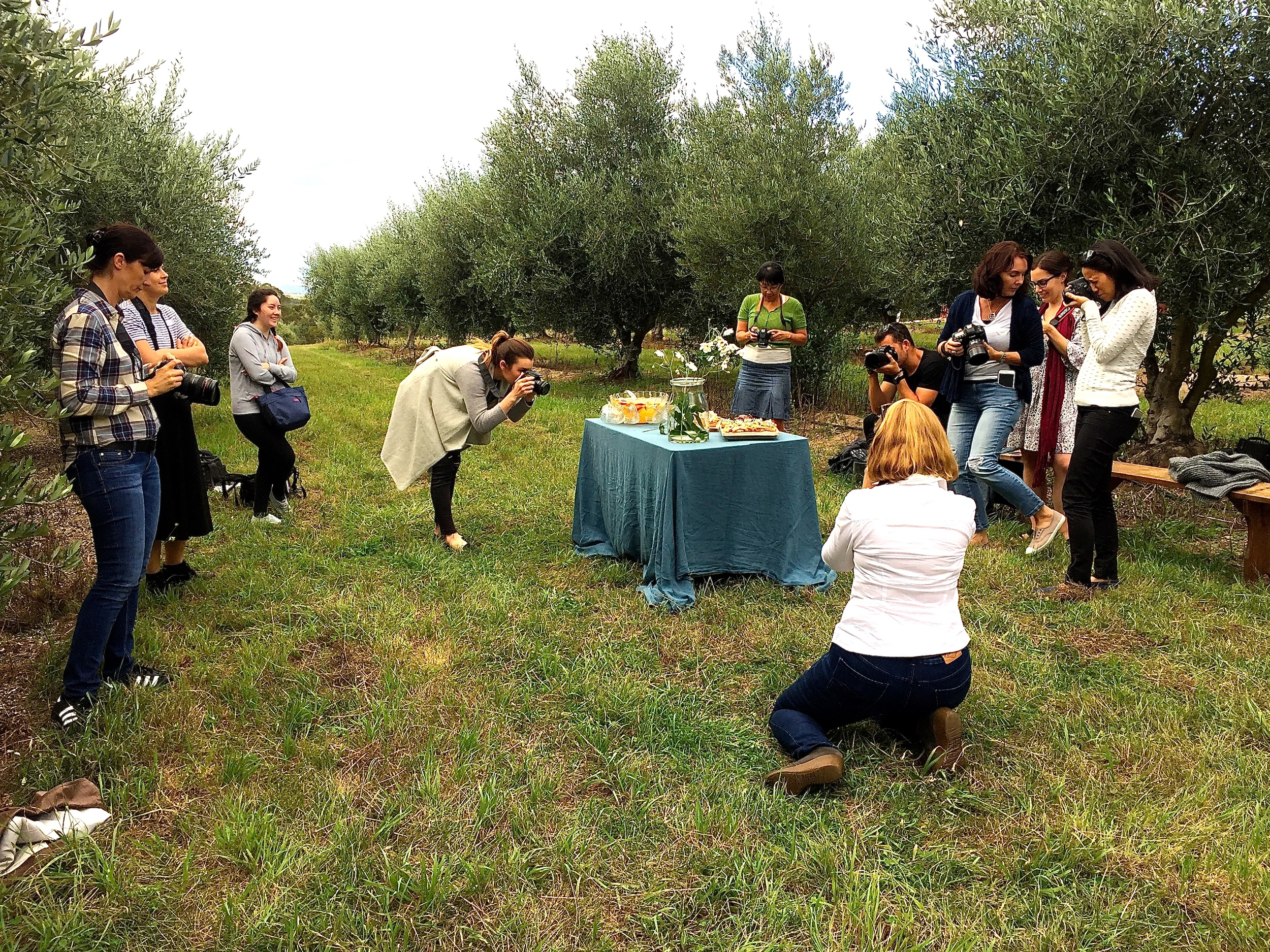 Afternoon refreshments in the olive grove