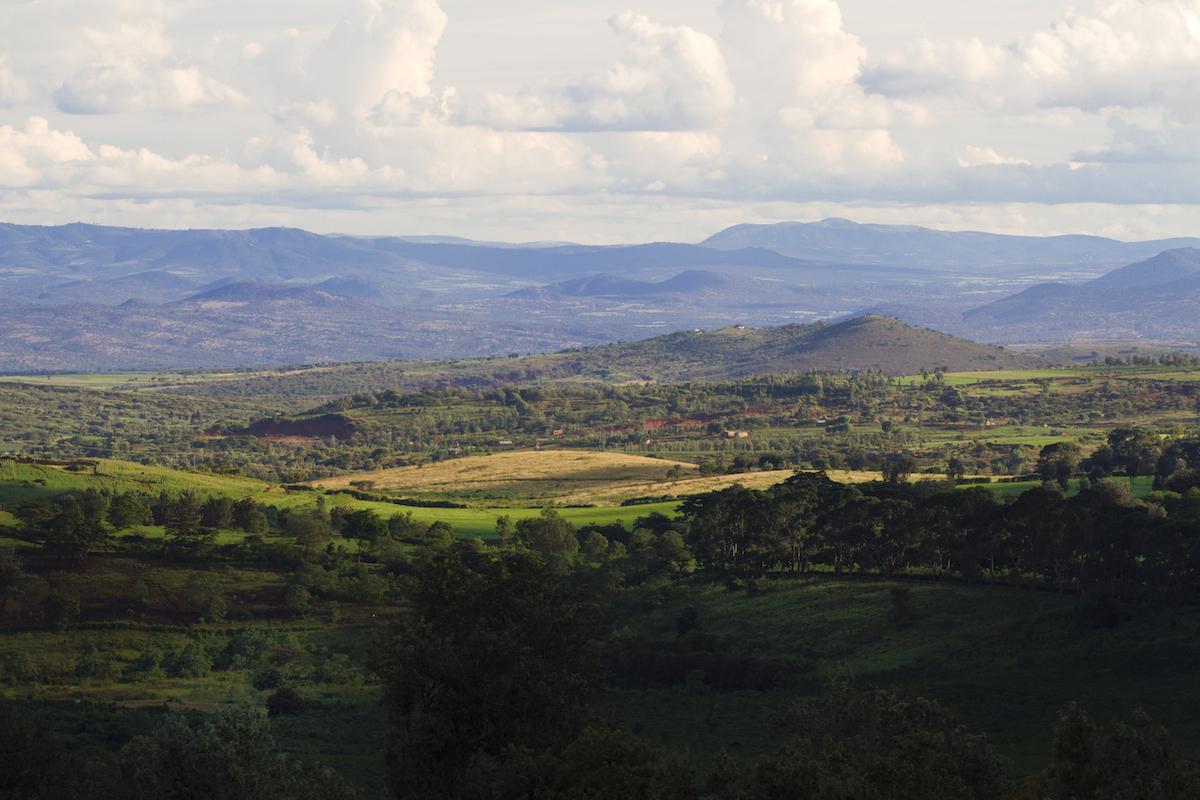 Gibbs_Farm_Tanzania_Safari_Landscape_2_Takims_Holidays