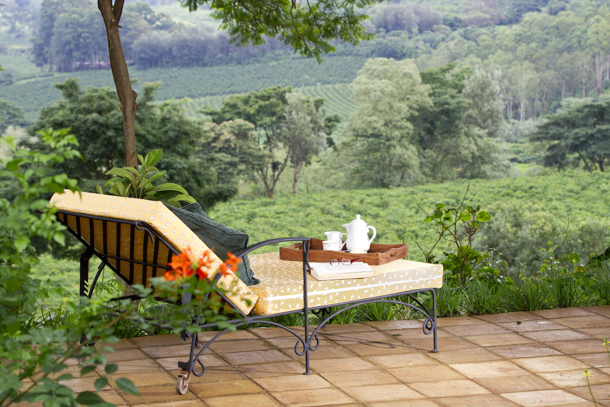 Gibbs_Farm_Tanzania_Safari_Relaxing_1_Takims_Holidays