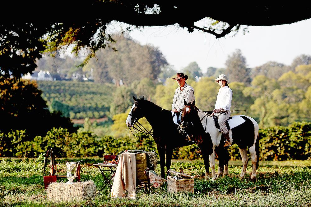 The_Manor_Horses_Tanzania_Safari_Takims_Holidays