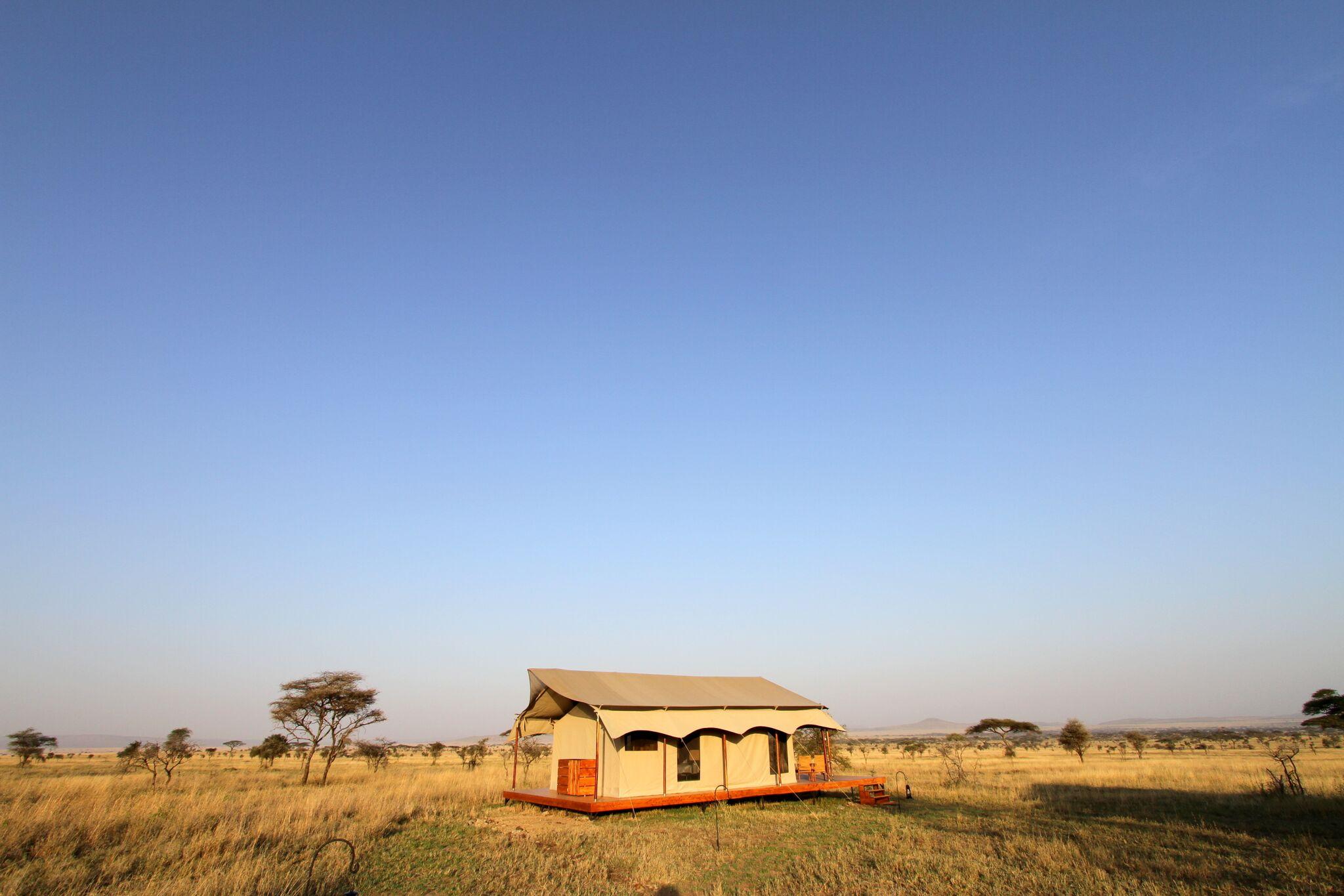 Honeymoon Tent 1.JPG