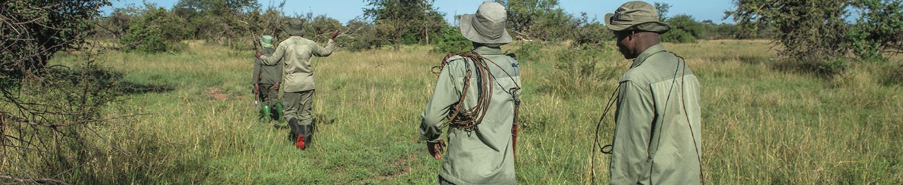 field_team_park_rangers_serengeti.png