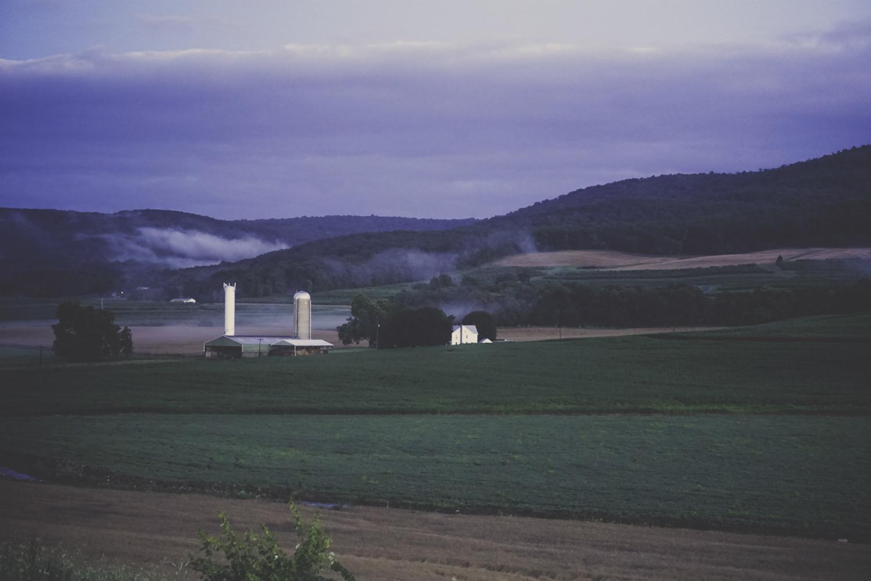 Farm Rise after the Rains