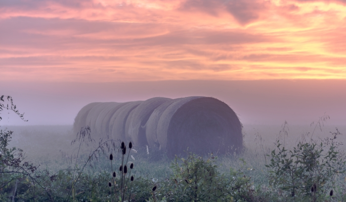"""""""Hayroll in the Morning Mist"""" (c) Rebecca LaChance, 2014, Frederick, MD. Another artist labelled my landscapes as """"provocative"""". I wonder what thoughts this hayroll provoked? Prints of this award winning photo can be purchased from the  Gallery Shop ."""