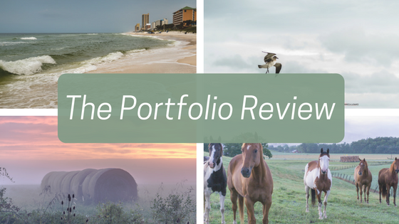 Four of the images I submitted to Carolyn Mendelsohn for my portfolio review. Top row from the left:  Storms come from the we  st  and  Air Dancing . Bottom row from left:  Hayrolls in the morning mis t and  Horse Friends at Sunrise . All images(c) Rebecca LaChance.