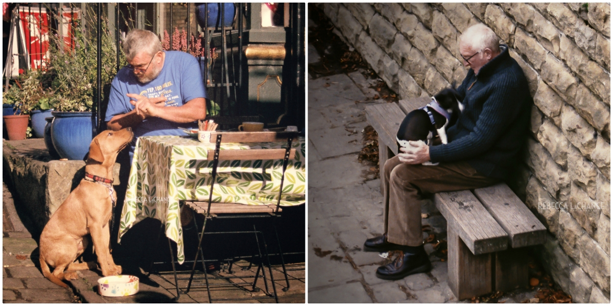 "Left:  ""Wait for it"" (c) Rebecca LaChance. 2016, Haworth, England.  Right: ""His new best friend"" (c) Rebecca LaChance, 2016. Saltaire Canal, Shipley, England.    Oh   look! There are people in these images."