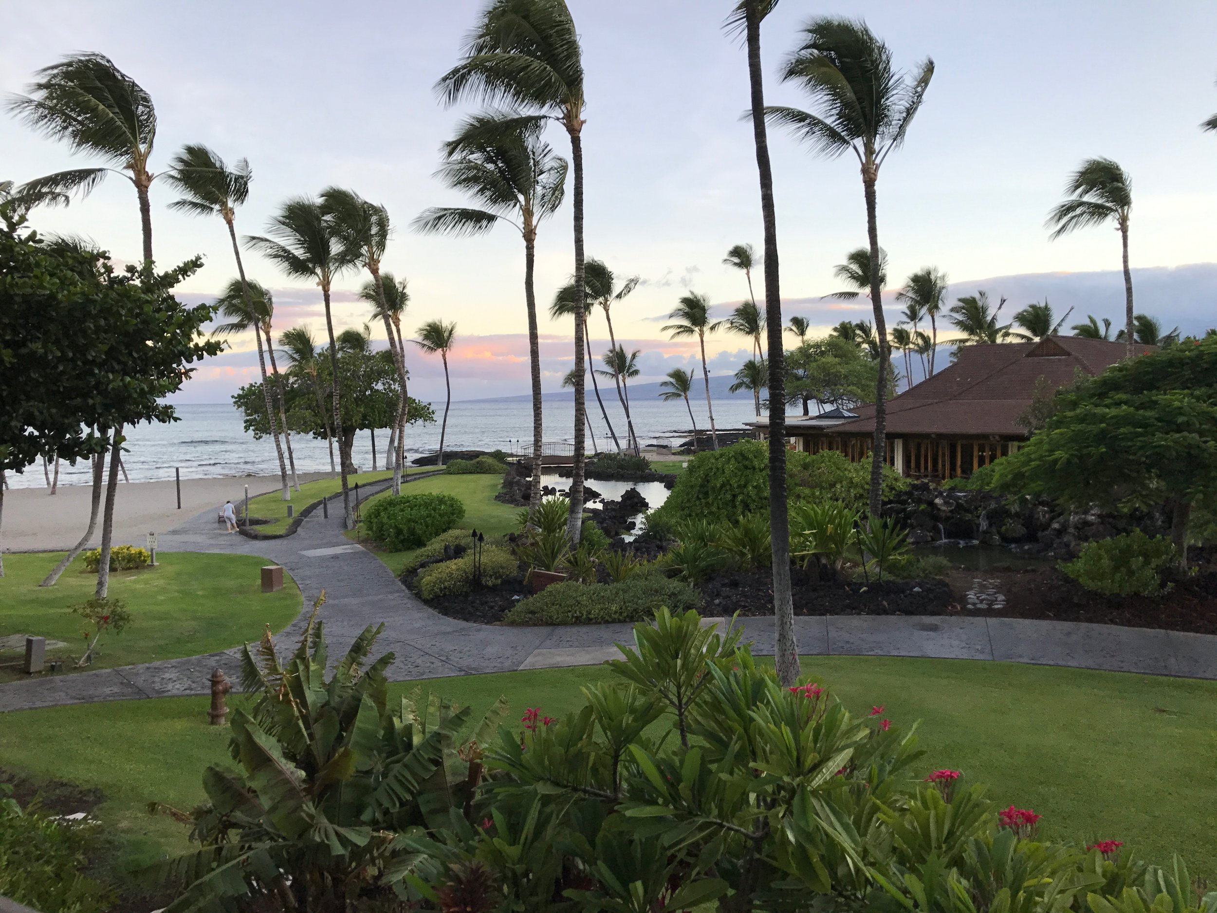 """""""Good Morning, World!"""" The view from my room in Hawai'i. Yeah, I know... I took part in an international photographers mastermind group. You probably wouldn't believe it was """"all work and no play for me"""".  THAT  was poor planning on my part."""