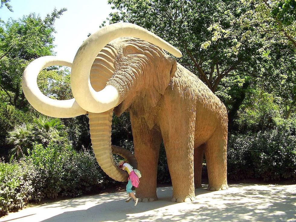 el-mamut-de-piedra-de-la-ciudadela_370402.jpg