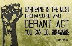 Gardening defiance.jpg