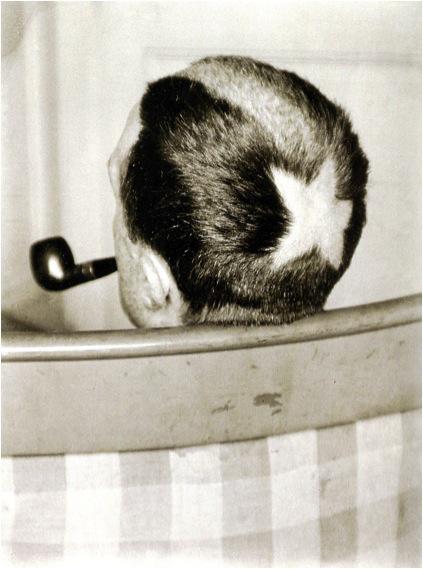 Many Ray, Tonsure (Marcel Duchamp), 1919.