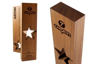 aecom recovered wood star eco-friendly custom award design
