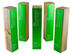 disney classic custom corporate award and trophy