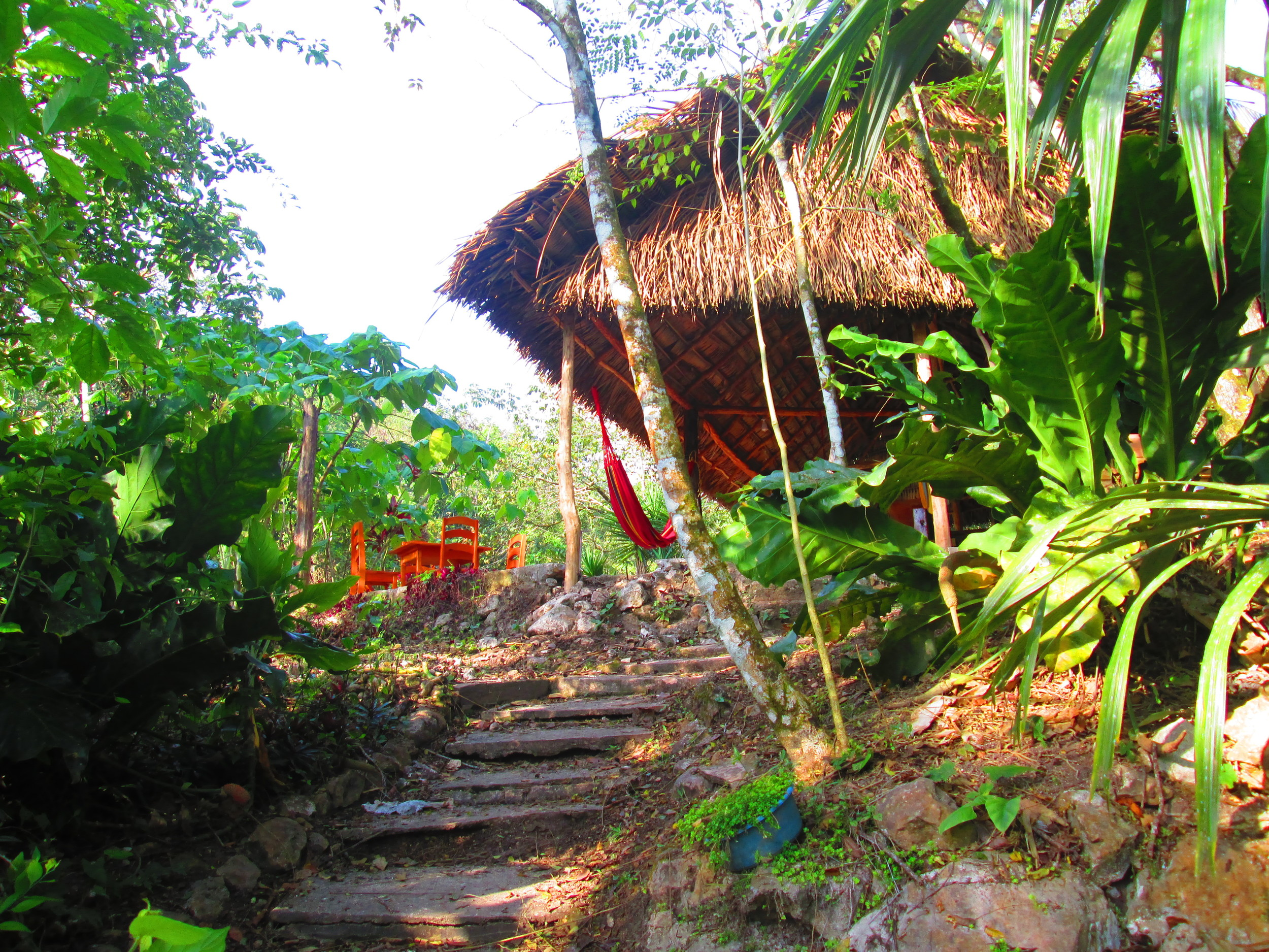 stairs to dining.JPG