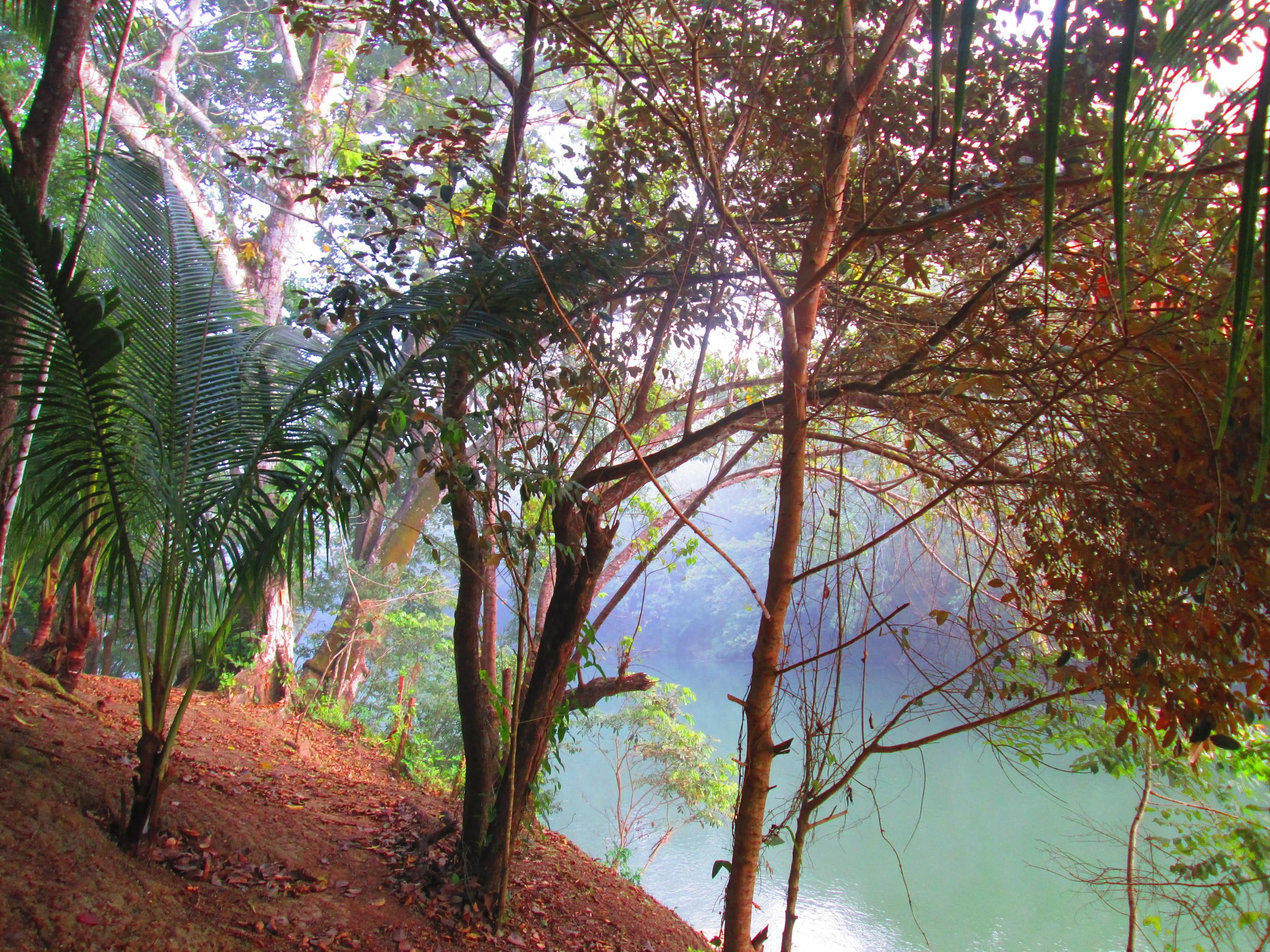 Belize River Bank.JPG