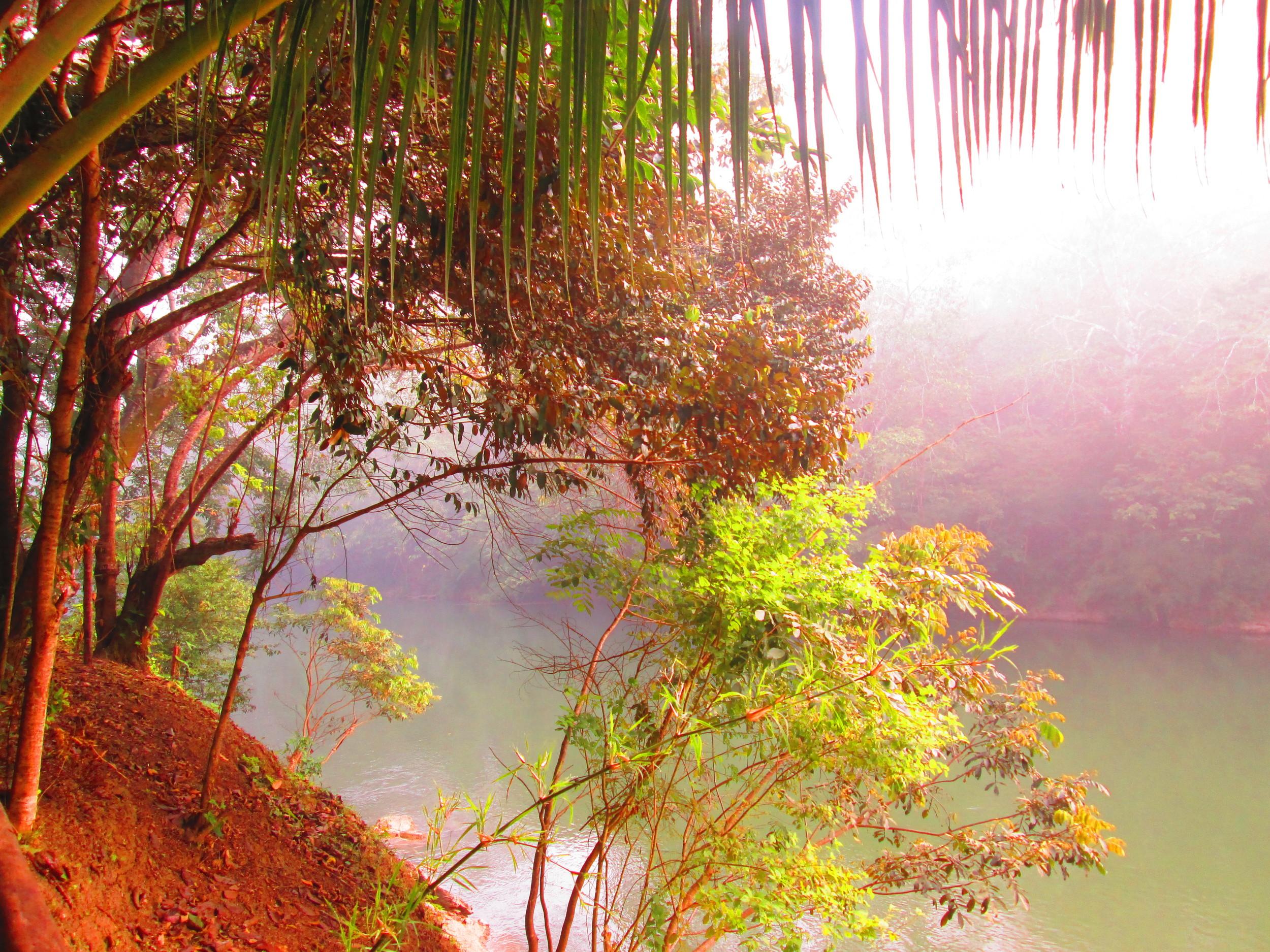 Belize River Bank 2.JPG