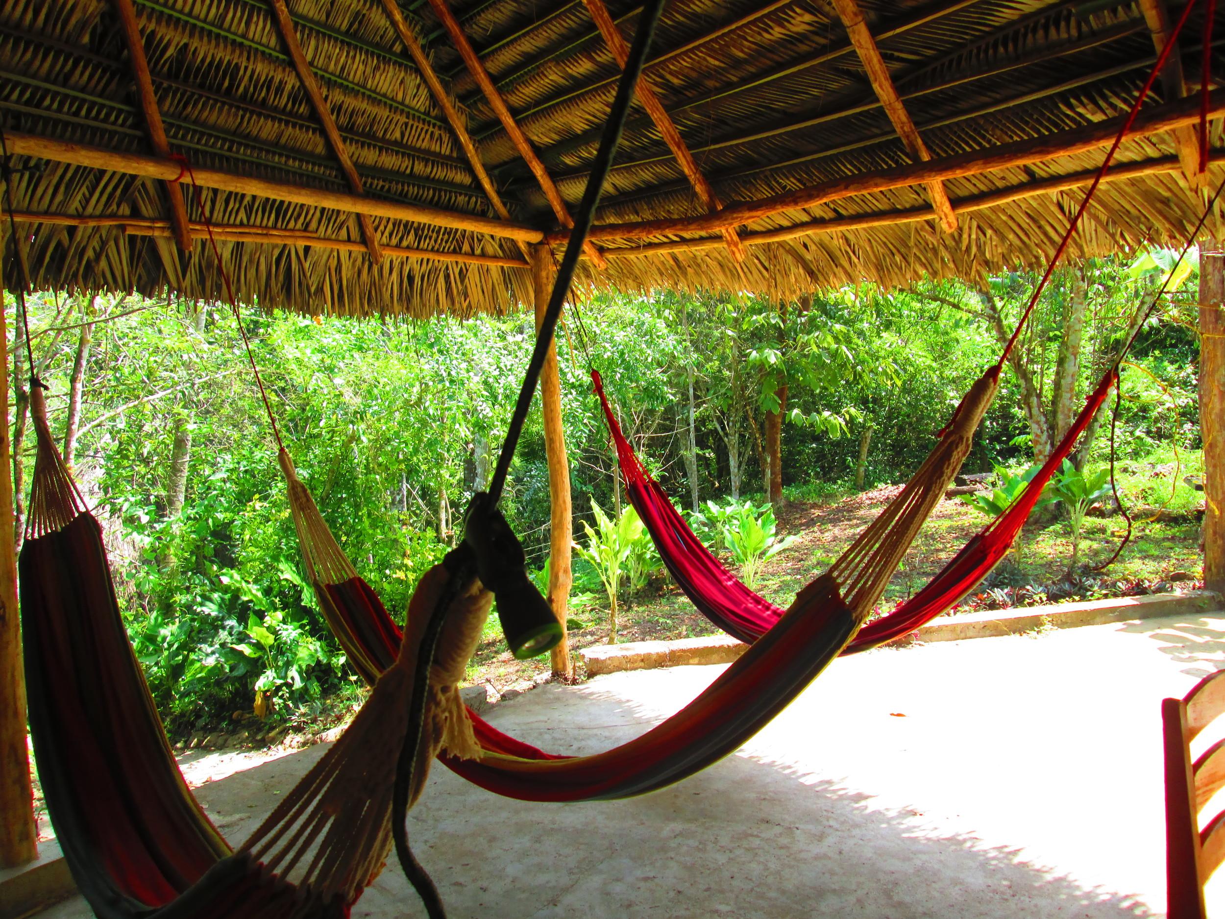 Three hammocks 2.JPG