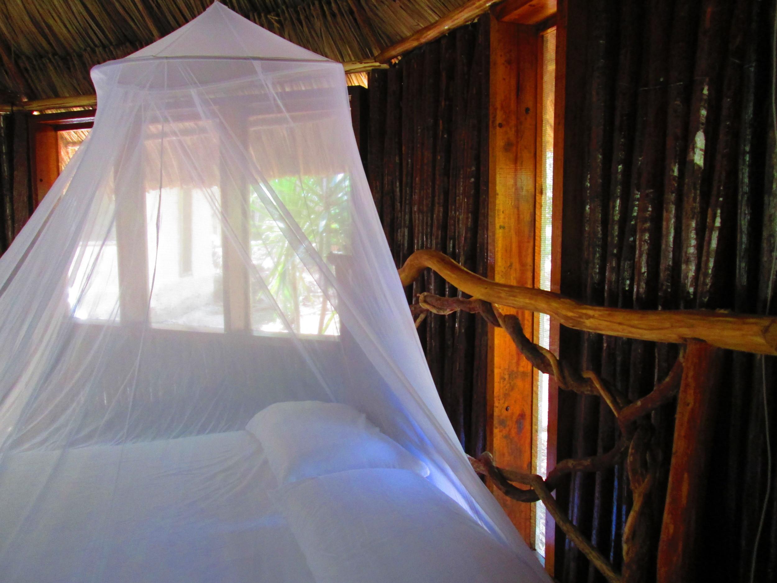 Mosquito Netting.JPG