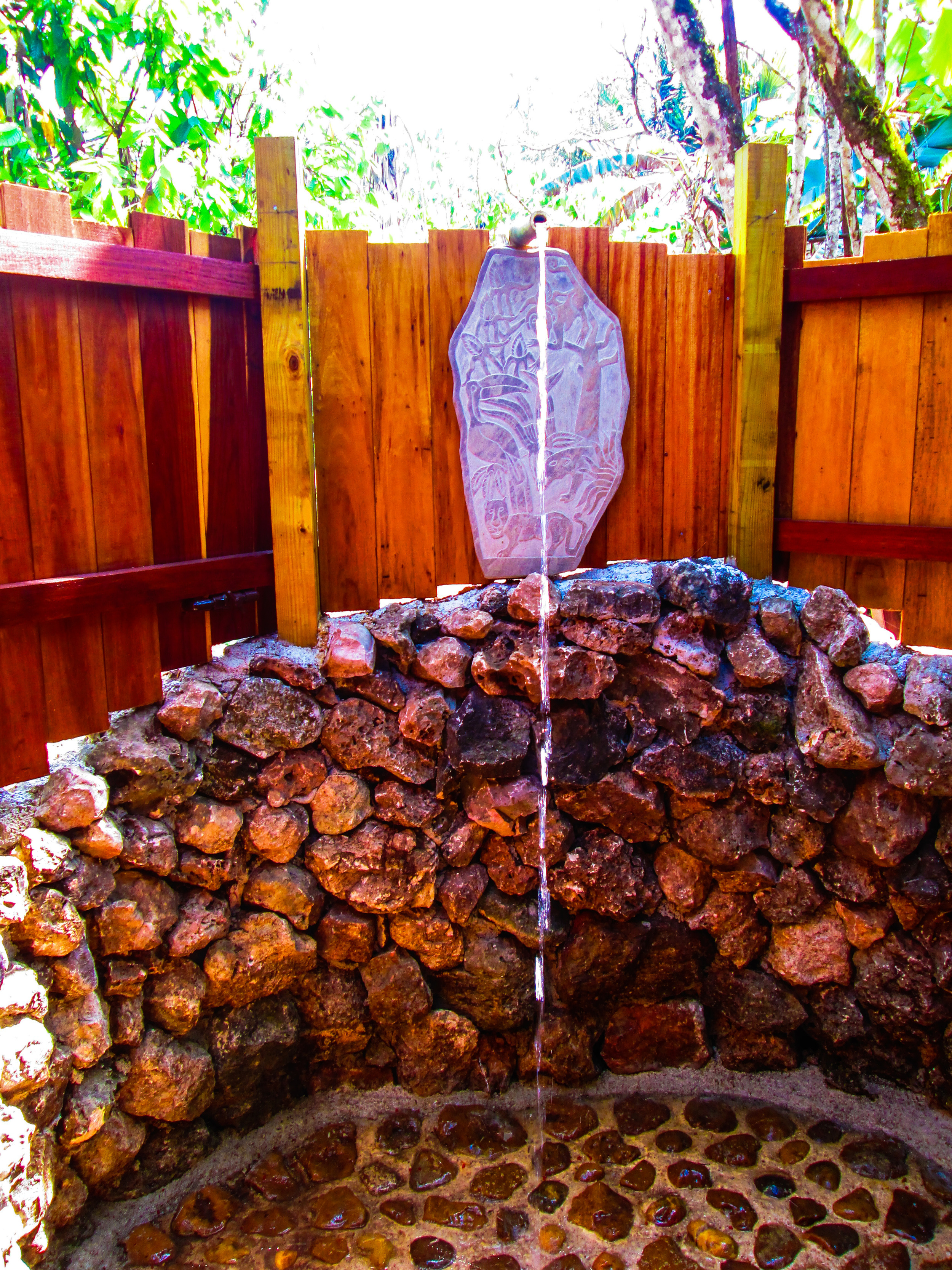tropical_shower_3.jpg