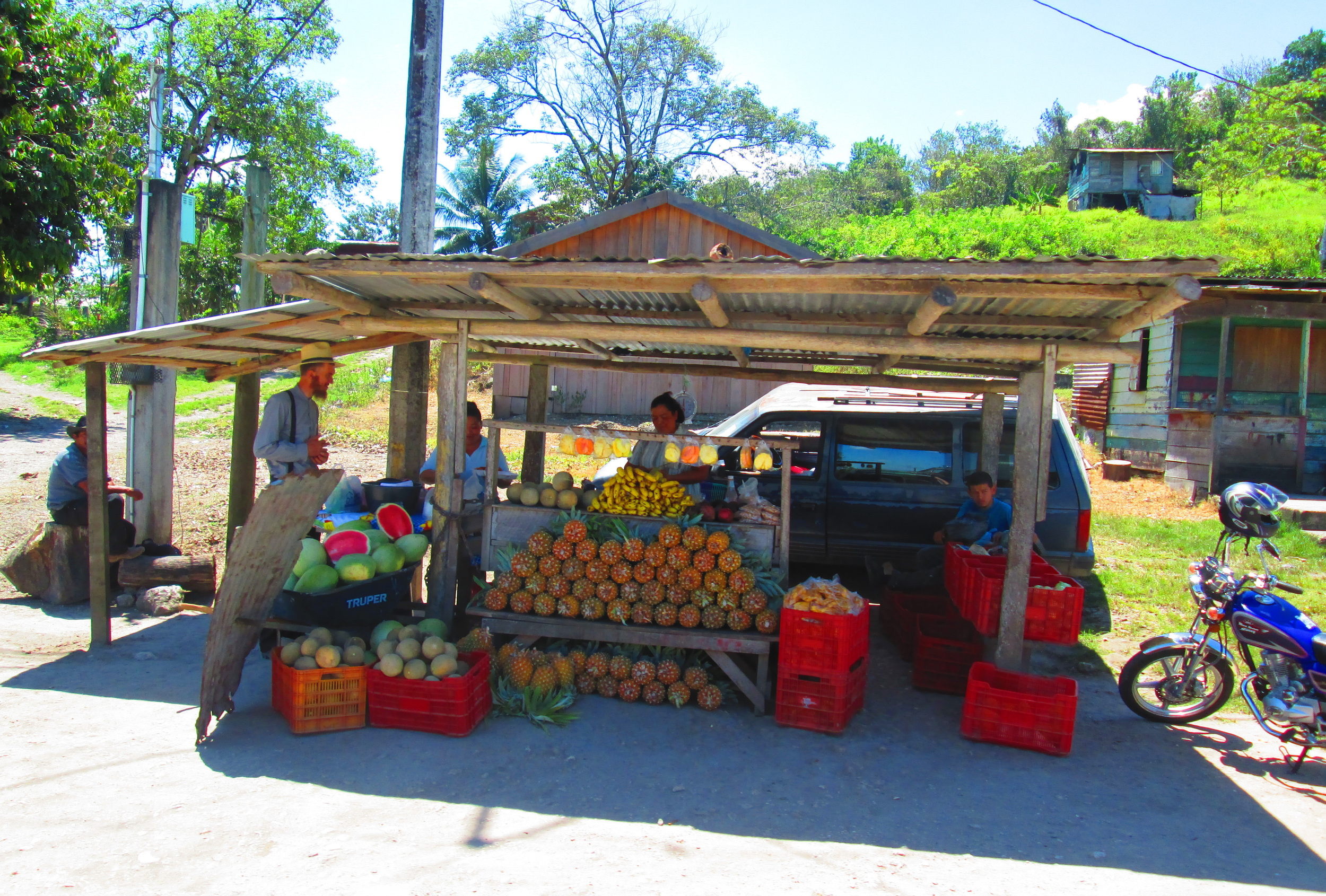 fruit_stand_mennonite.jpg