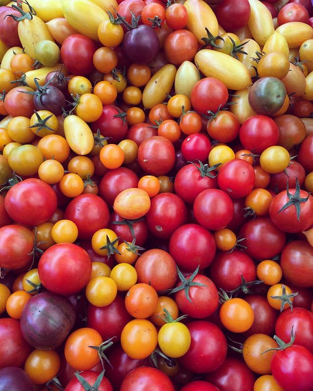October #farmersmarket #tomatoes #fallharvest #shoplocal #eatlocal #fresh #goodfood #ballardfarmersmarket #pnwgrown #seattle #cherrytomatoes