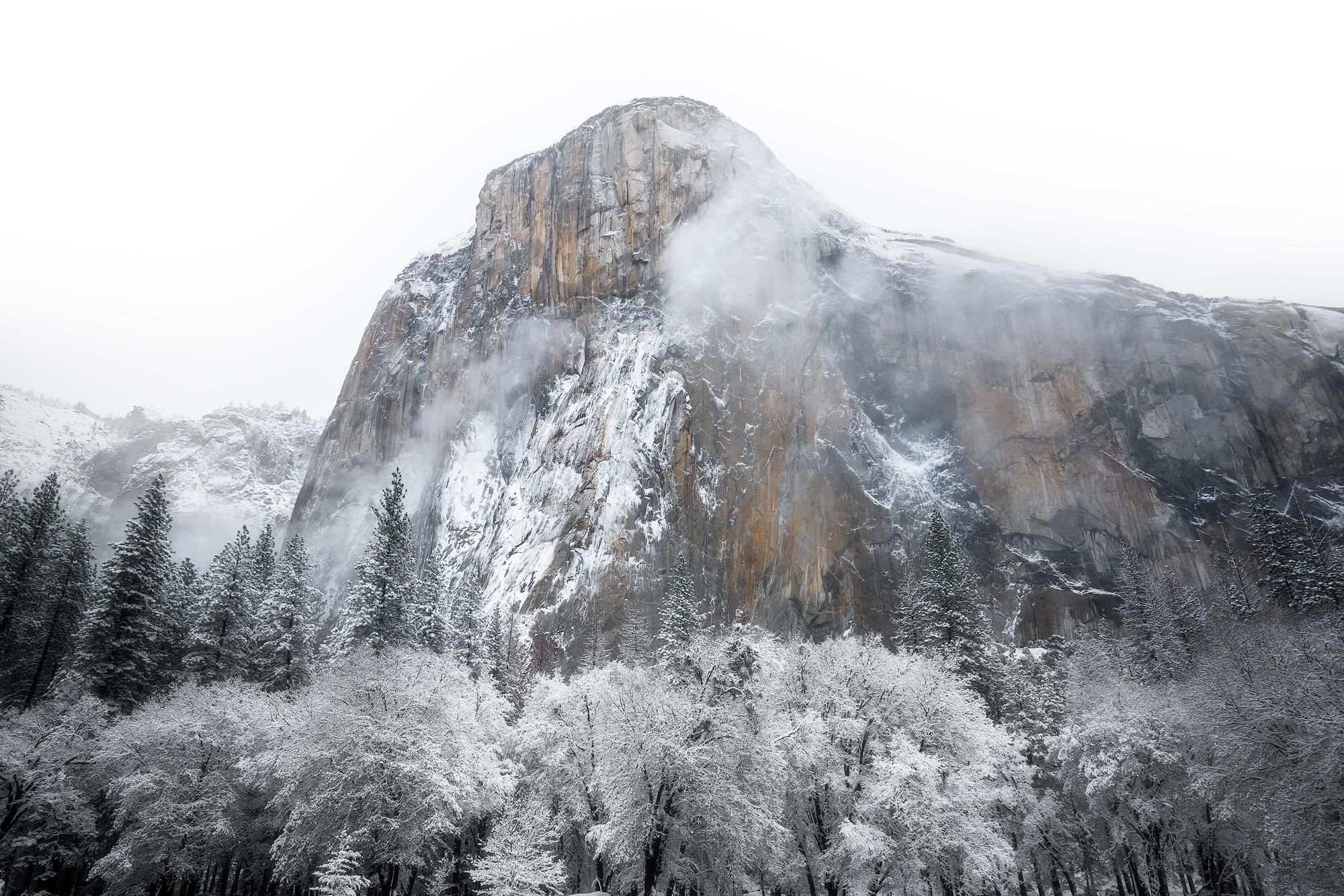 White Bliss- Yosemite, CA