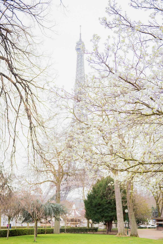 Paris surprise porposal photo session for Mike & Johana-63.jpg