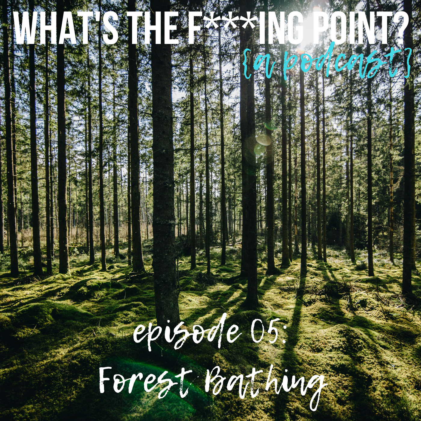 forestbathing-WTFP