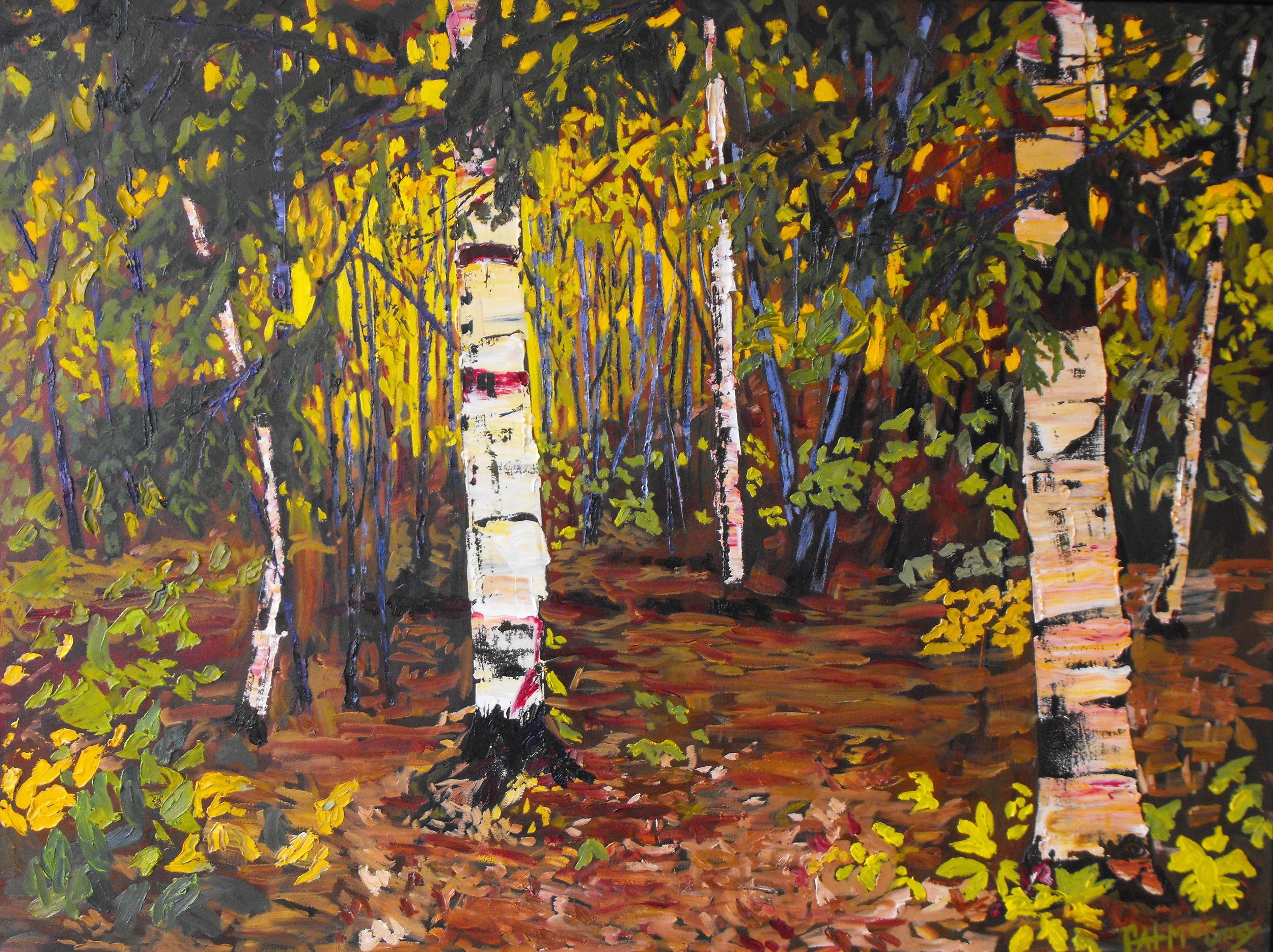 Birch Oasis, 36 X 48, Oil on Canvas