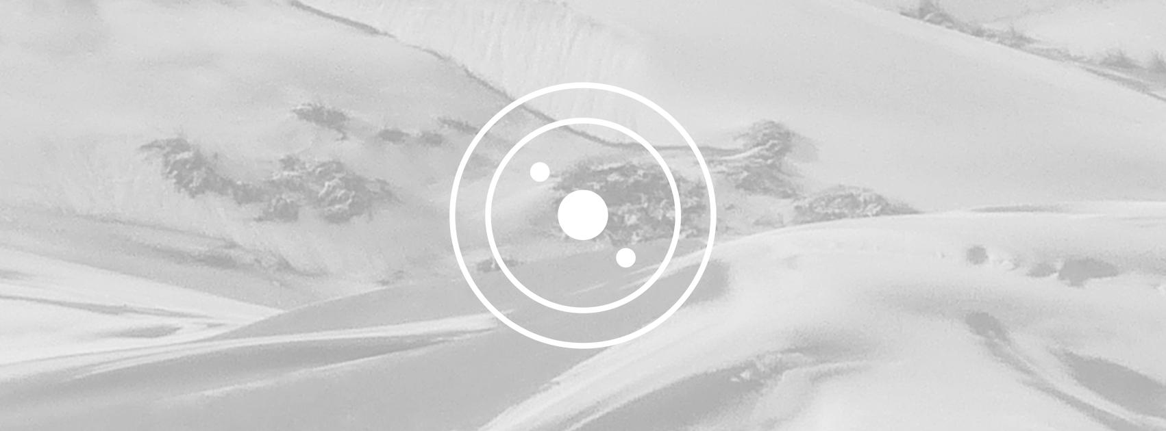 Qualia-Cover4-AZ.jpg