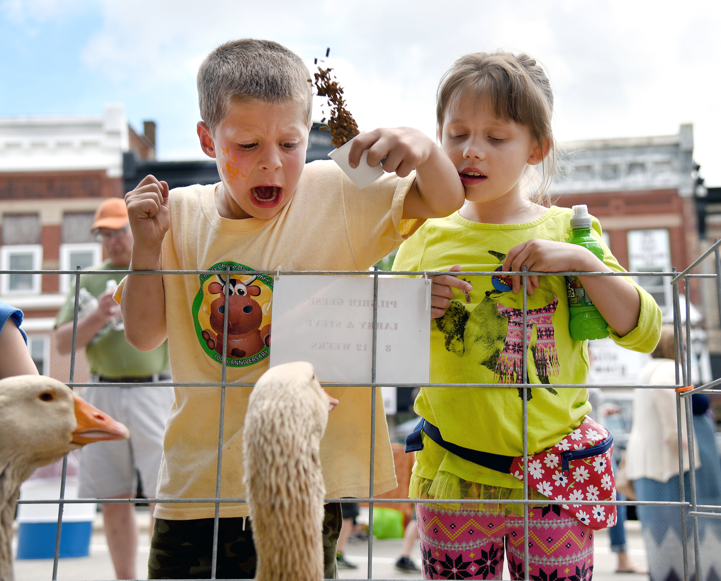 """Bentley Keller, 6, reacts after being bit while feeding a pilgrim goose next to Harmony Hawkins-Grinnell, of Juda, at a petting zoo at the Super Cows Kickoff on the the Square June 4, 2016. """"It didn't hurt though,"""" Keller said."""