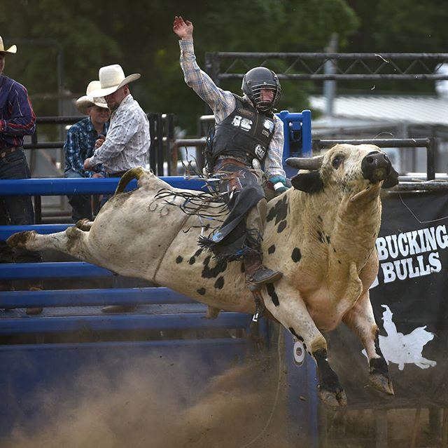 Rodeos make me feel wildly uncomfortable. #rodeo #greencountyfair2018 #monroewi #buckingbulls