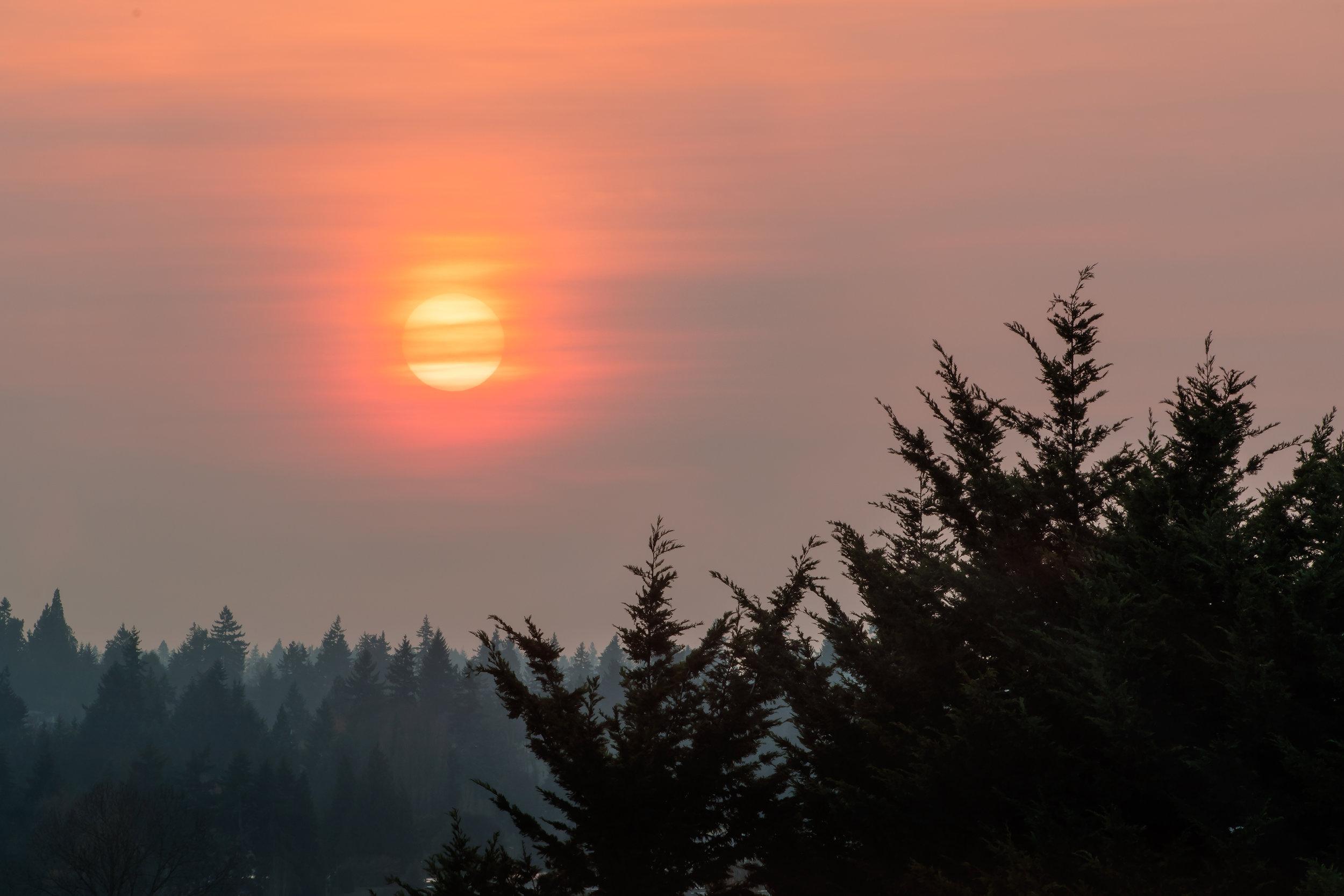 Bellevue_Sunset.jpg