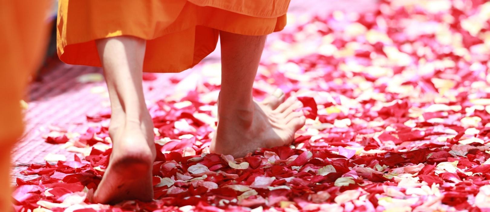 Walking Meditation with Zen Monks - Photo credit: Pixabay