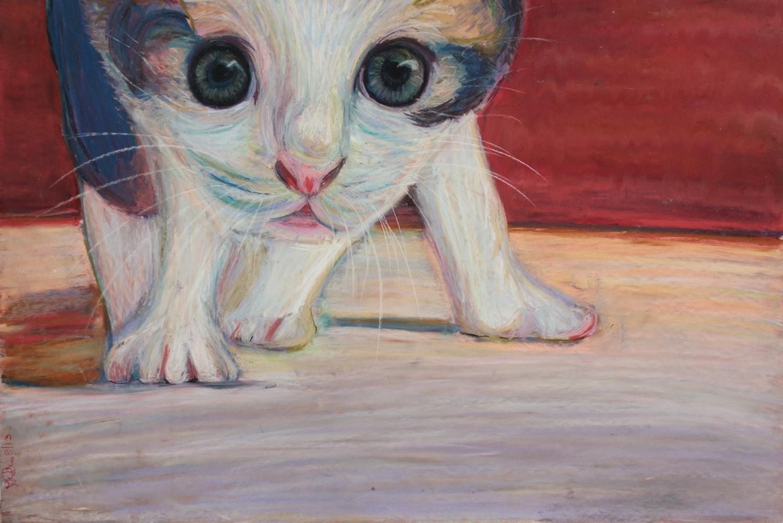 What the Kitten Did, FRAMED