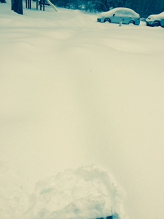 Somewhere in here is a walk way...welcome to Hoth