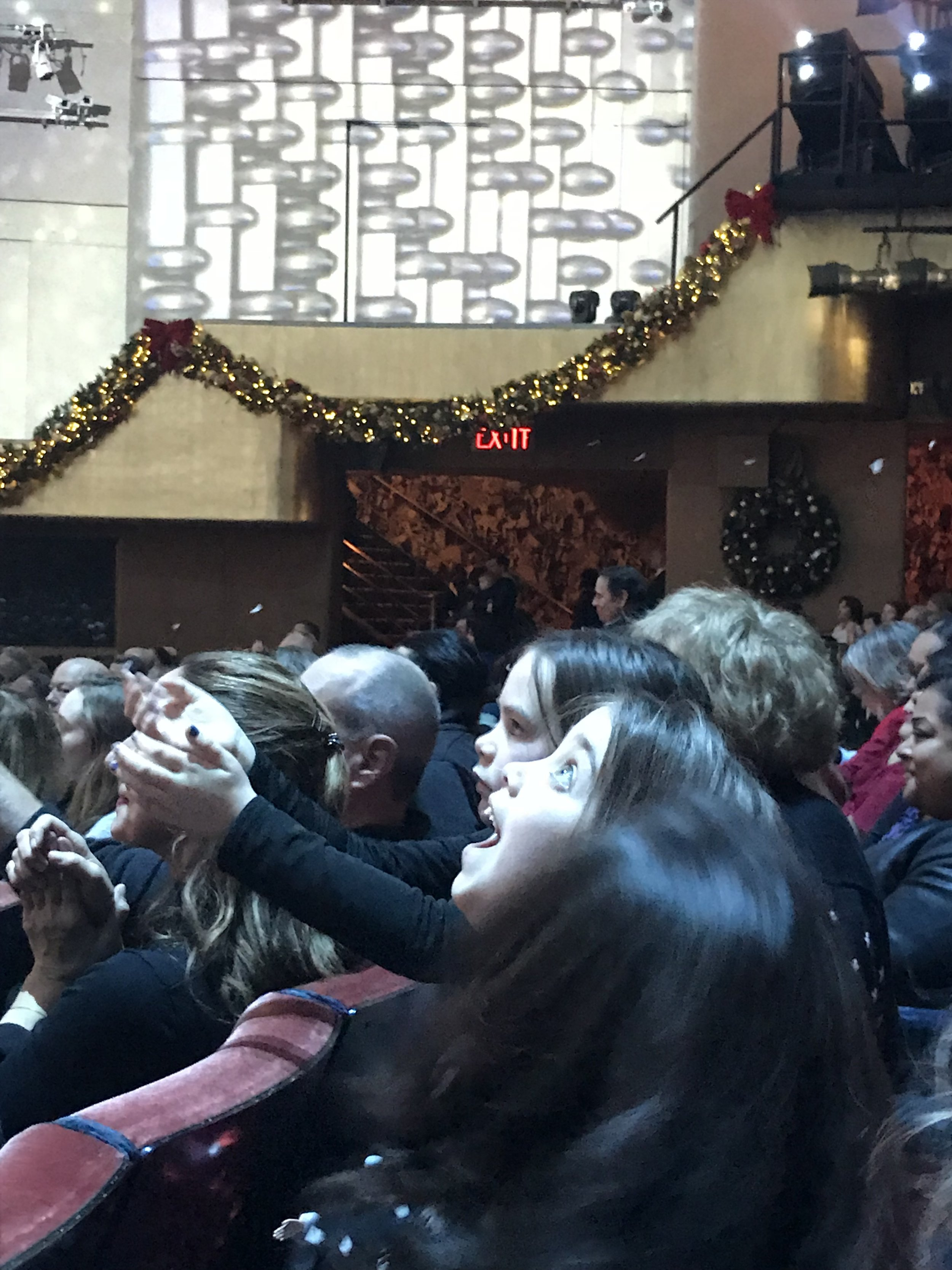 My mom got us tickets to the Radio City Christmas show and the look on the little girl's faces was magical