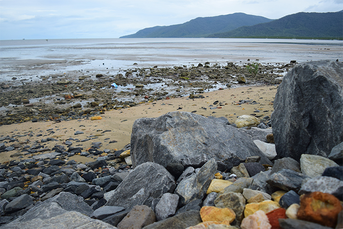 The rocks aren't very appealing to beach-goers, but they've helped sustain the mangroves along the coastline.