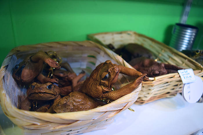 Cane toad coin purses.