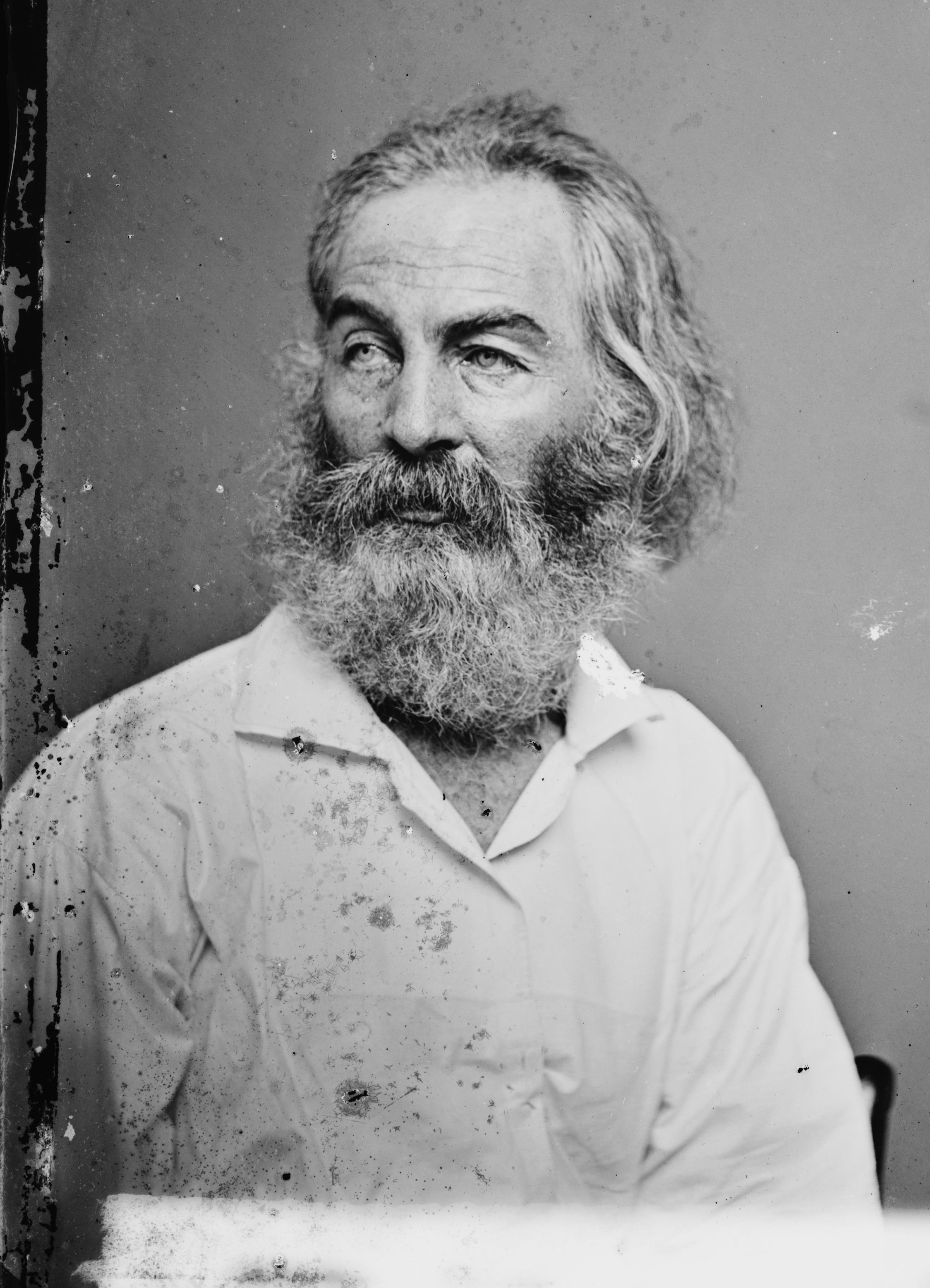 Walt Whitman. Photo courtesy of the Library of Congress Prints and Photographs Division, via Wikimedia Commons.