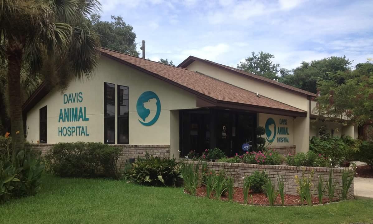 Davis Animal Hospital Veterinarian Pensacola
