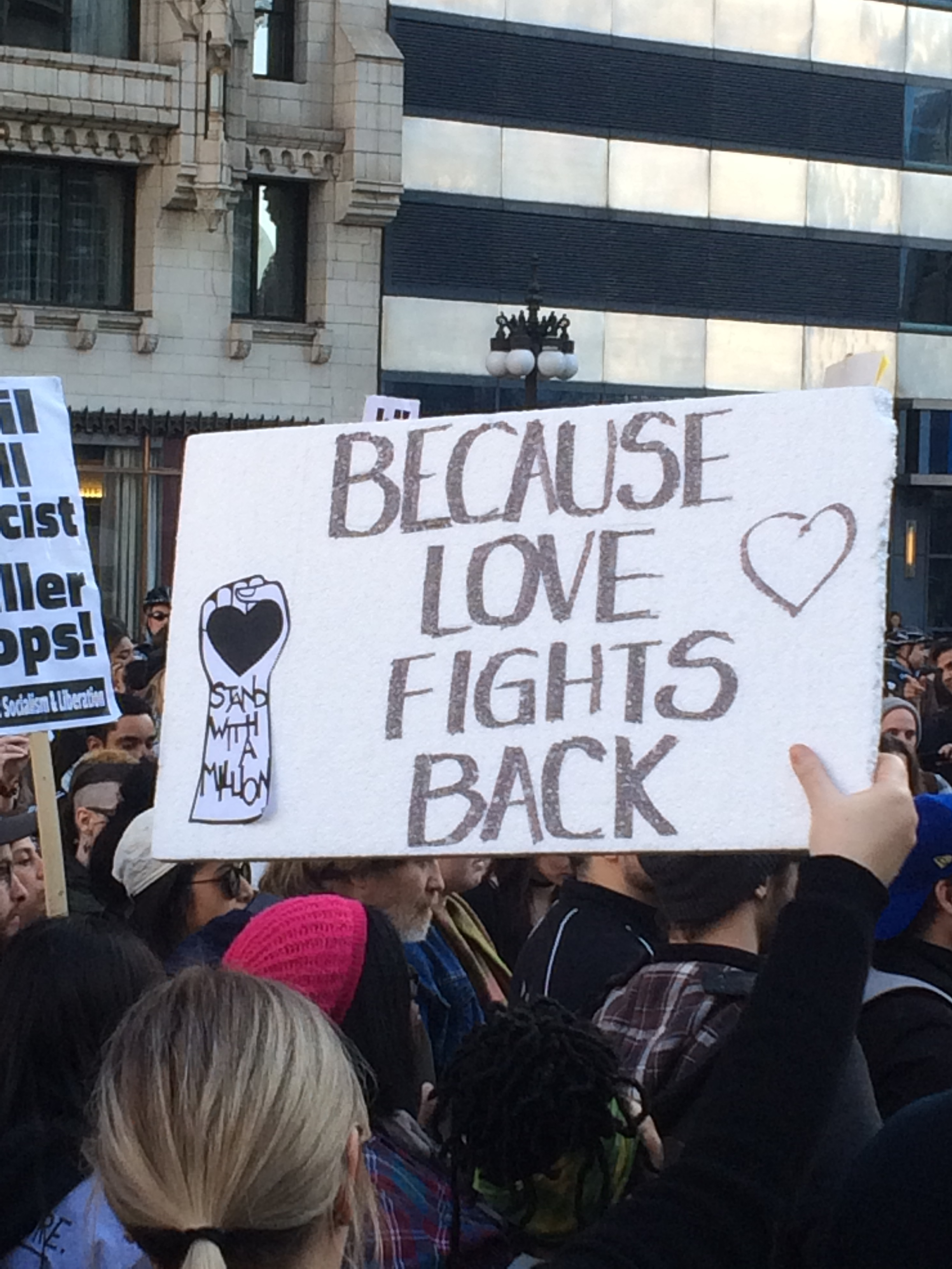 Women's March Chicago, January 2017
