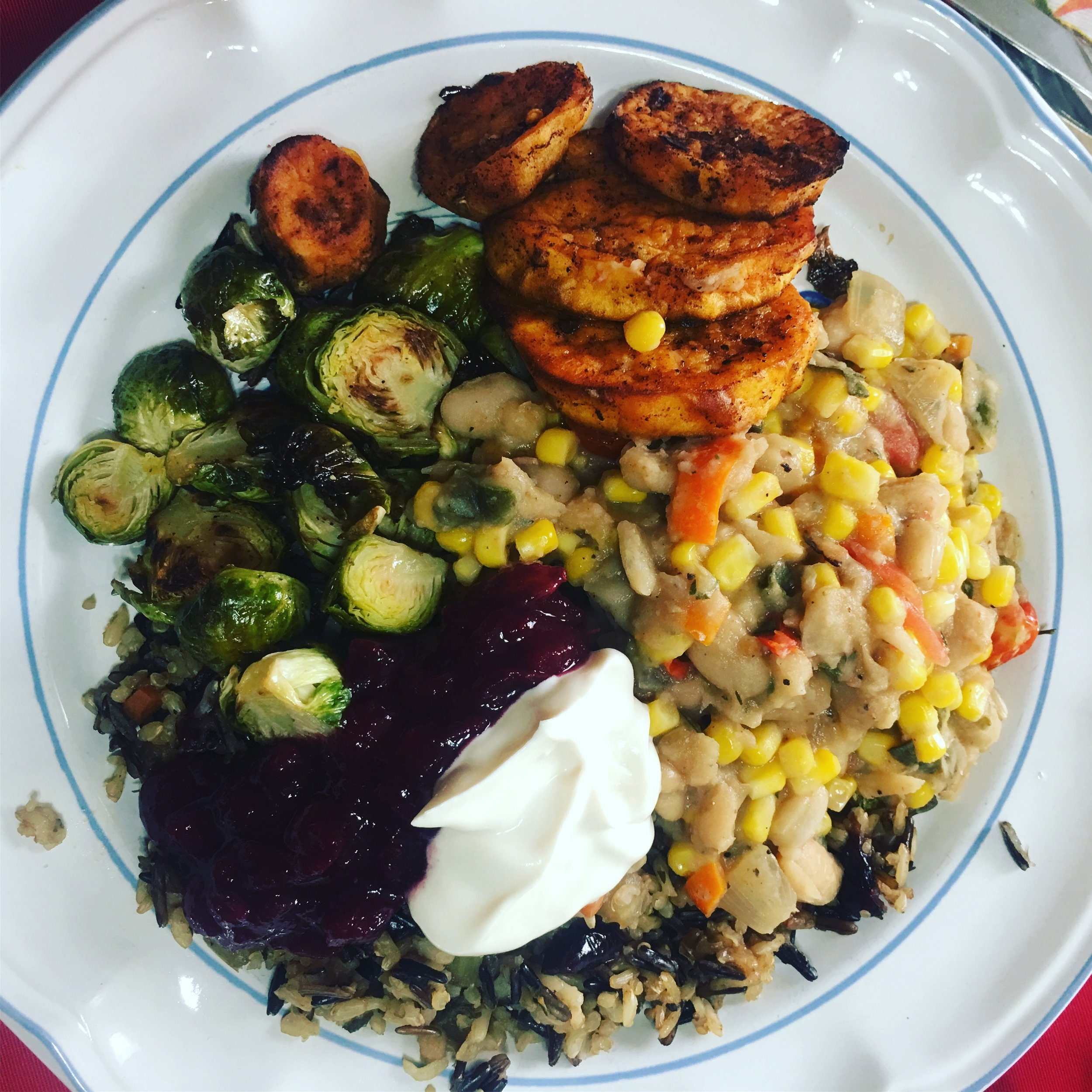 This year's gluten free, vegan Thanksgiving feast: cannellini bean succotash, wild rice quinoa stuffing, roasted Brussels sprouts, roasted sweet potatoes, cranberry sauce, and just a dollop of almond milk Greek yogurt. Awesome.