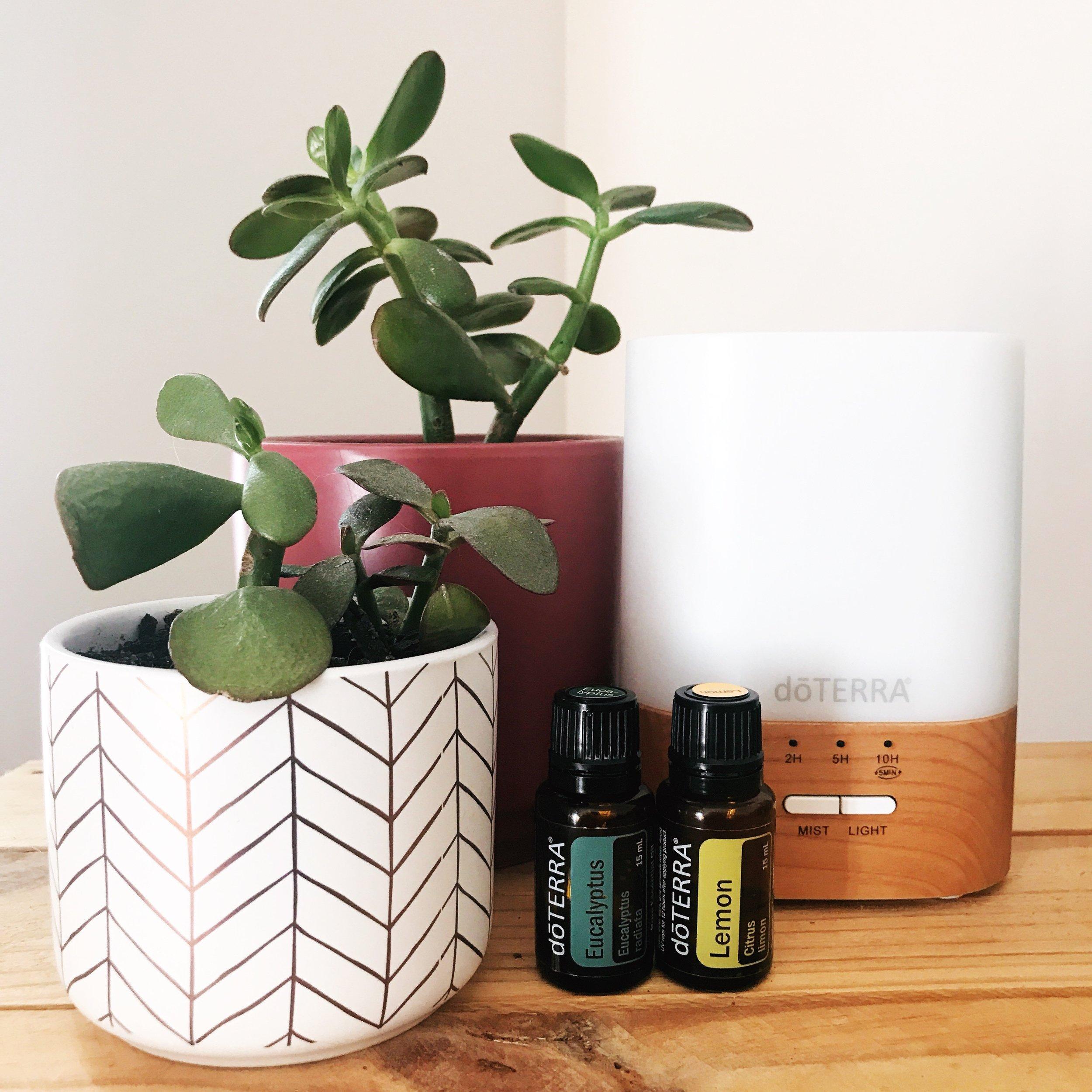 Adelaide Healthy Lifestyle Yoga Essential Oils