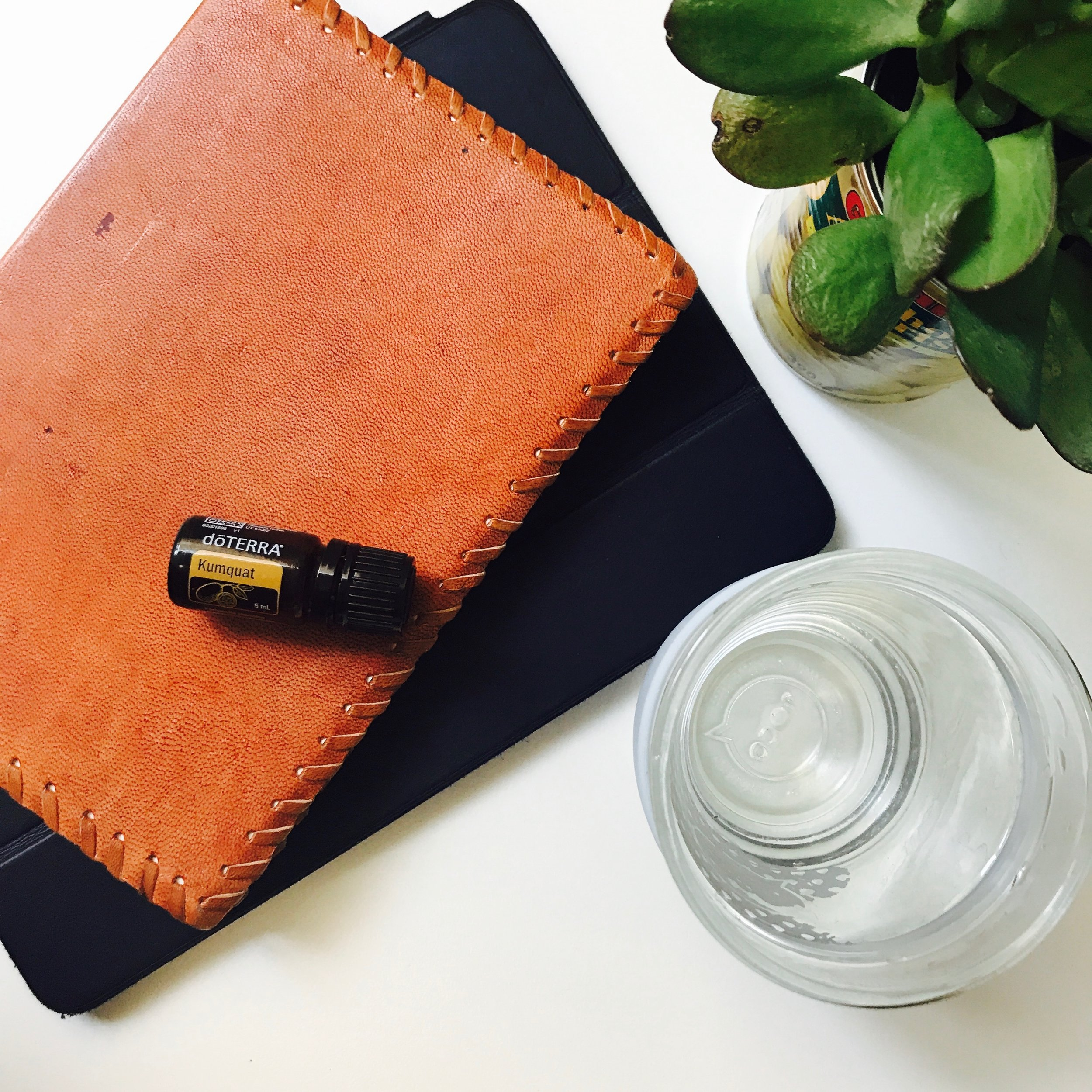 Kumquat doterra essential oil yoga teacher website builder.jpg