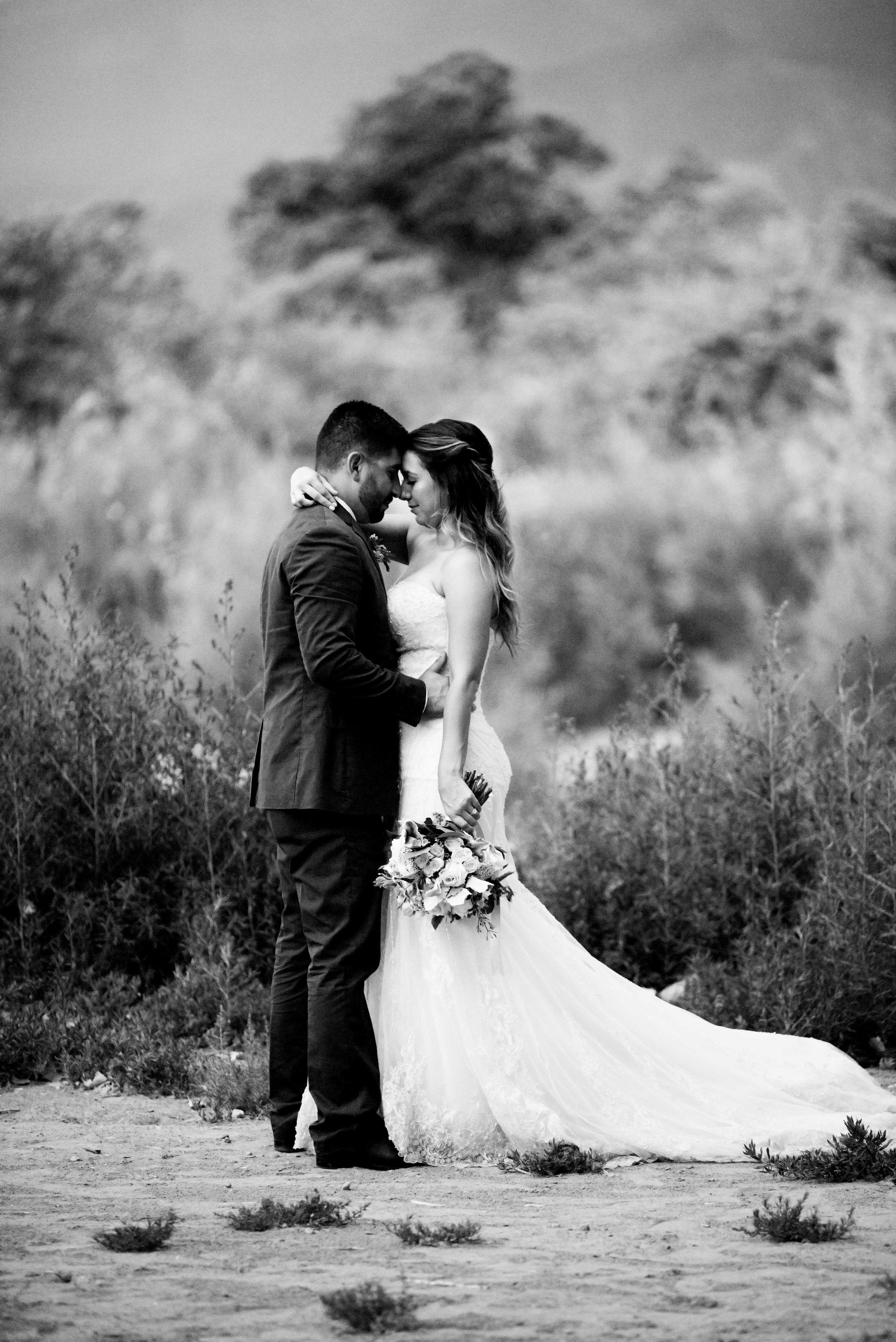 mew mexico wedding photographers