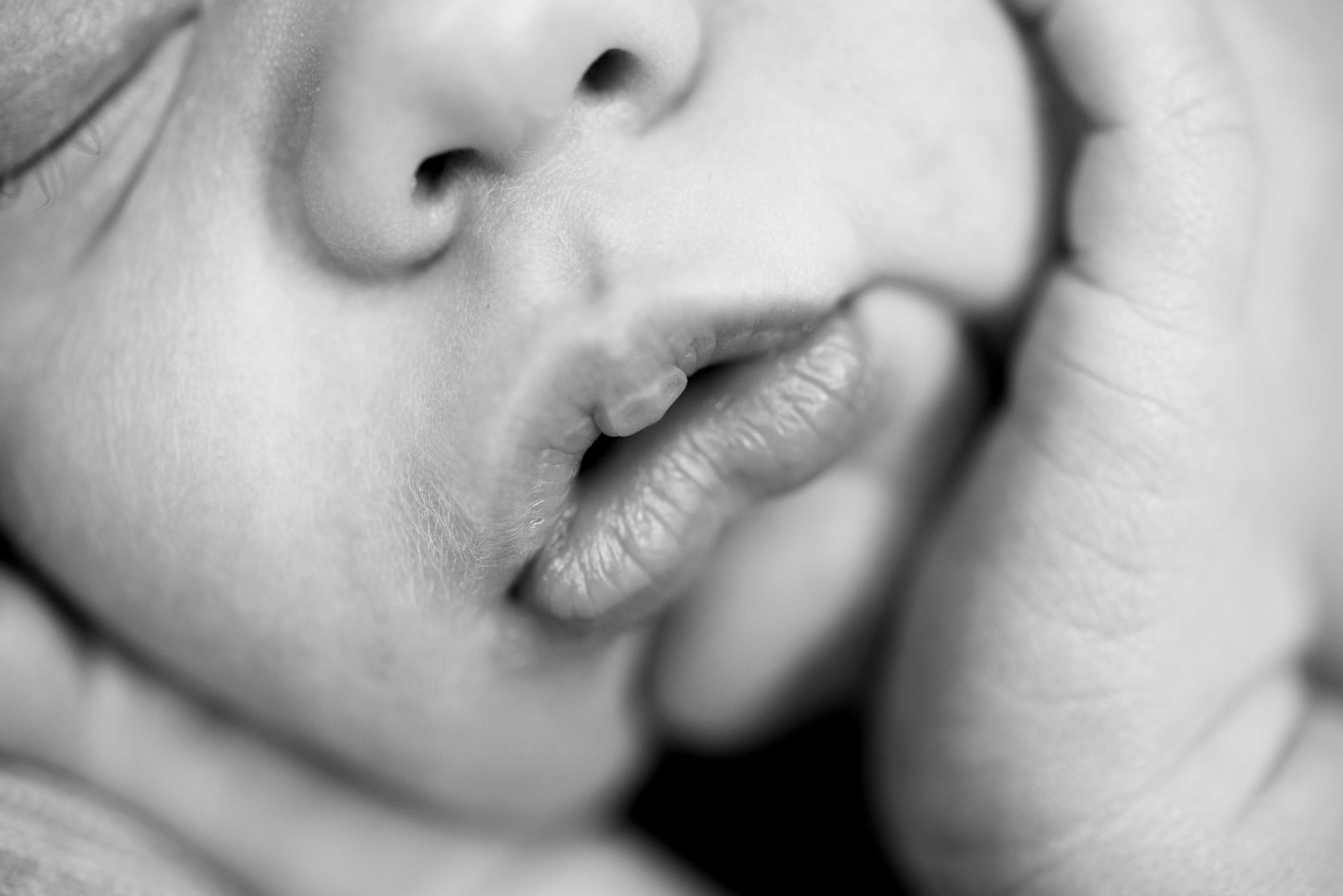 newborn photographers bernalillo, nm