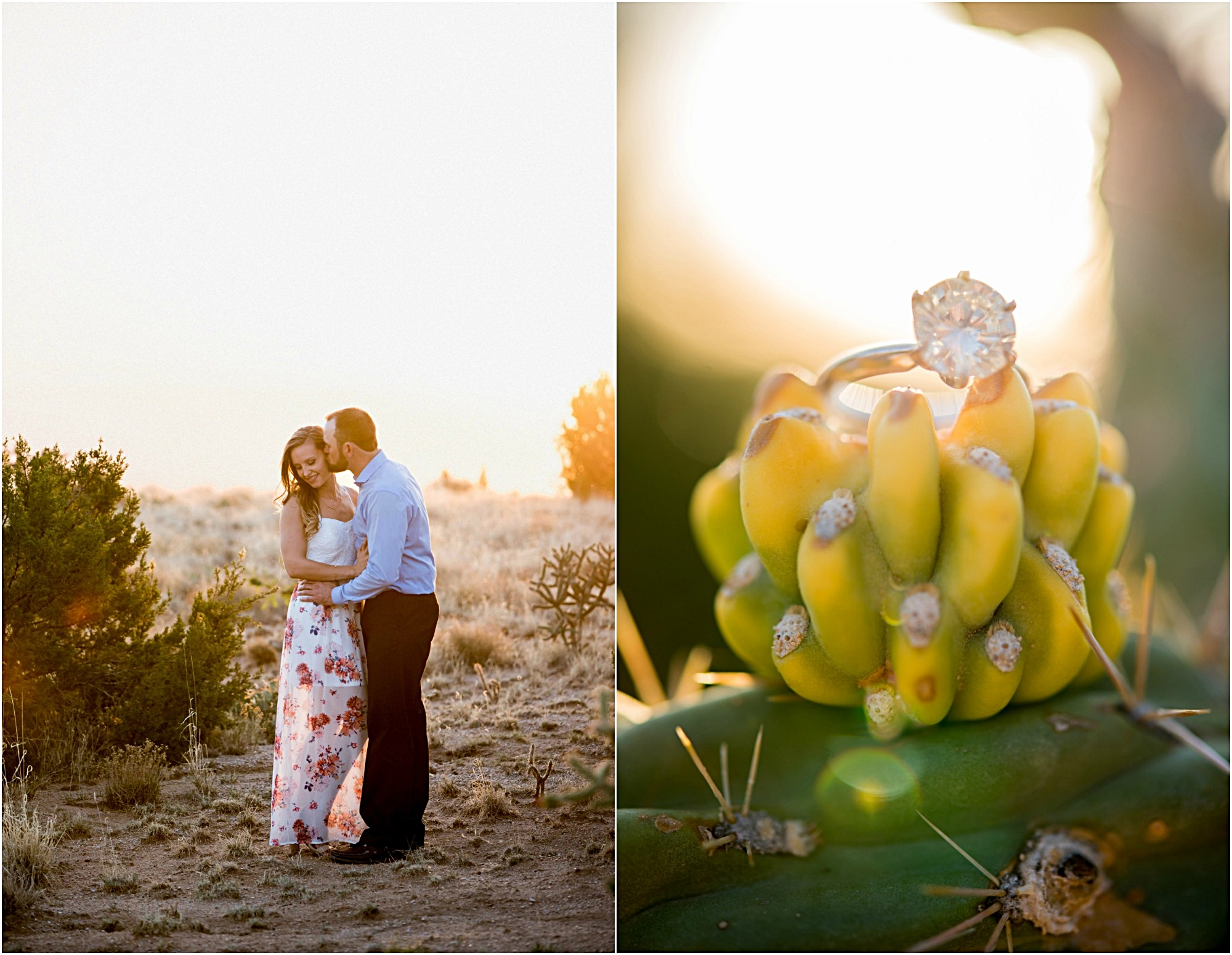 engagement photographer new mexico