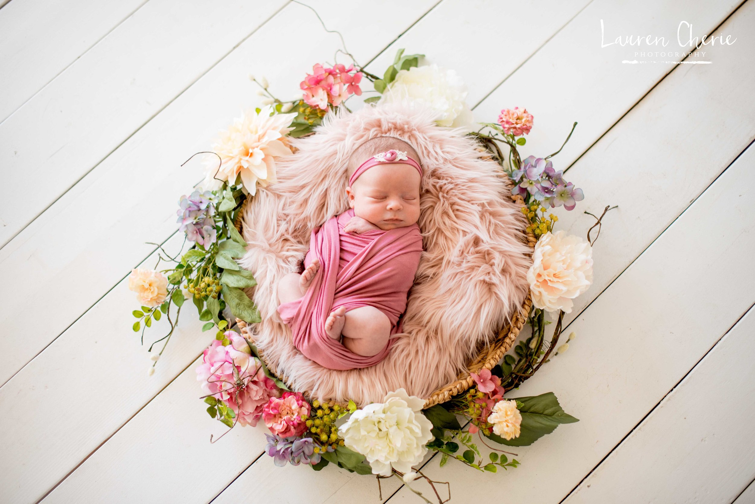 newborn photographers bernalillo