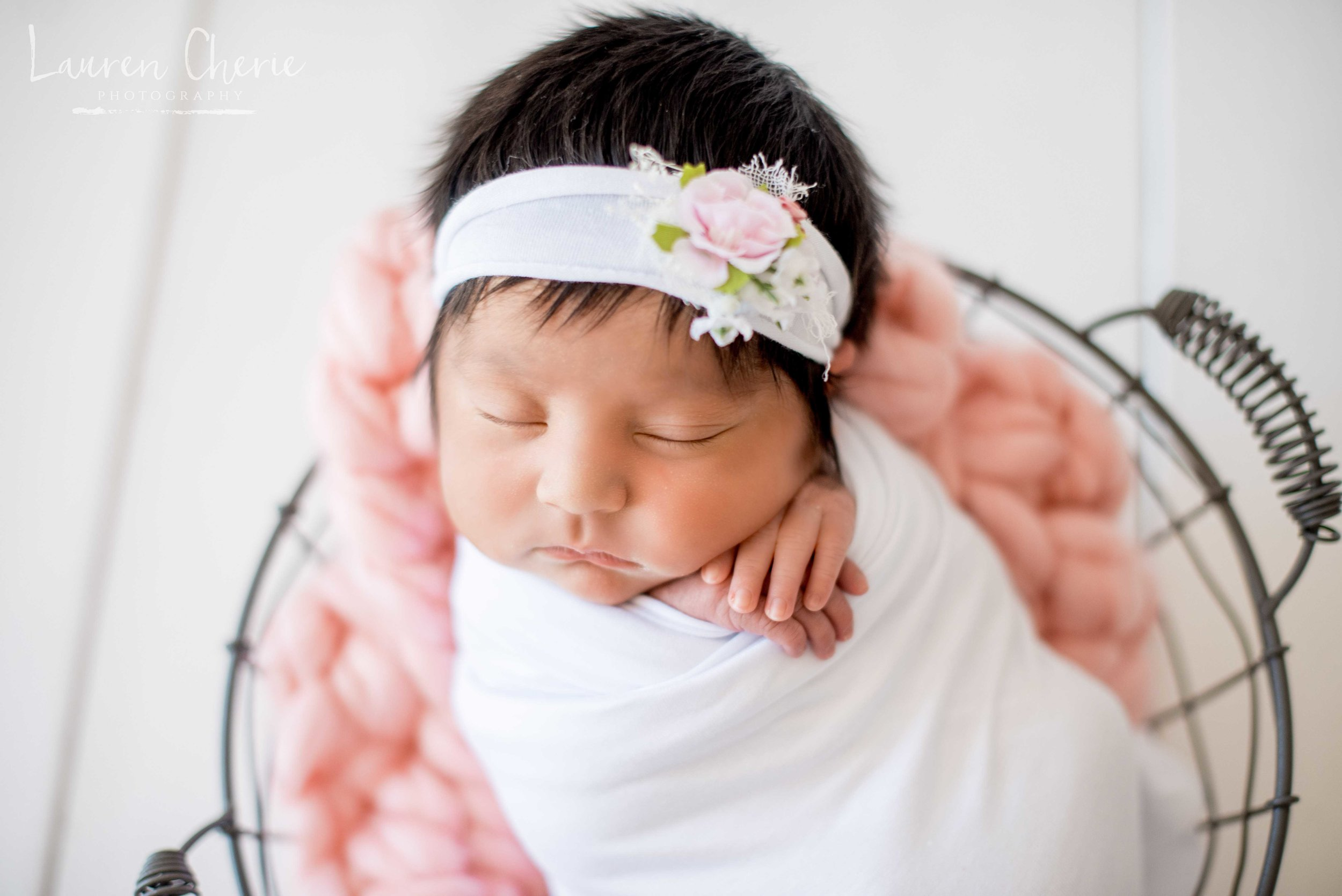 albuquerque newborn photos
