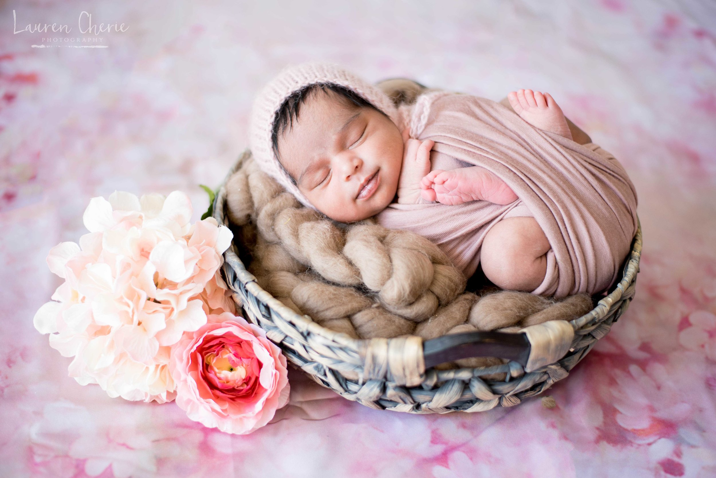 best newborn photographer albuquerque